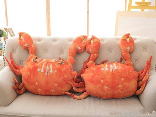 大螃蟹抱枕是什么梗 大螃蟹抱枕有什么意思