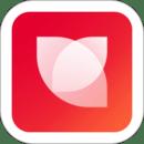 花瓣网手机app