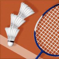 世界网球传奇大赛