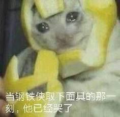 抖音流泪猫猫头是什么梗