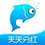 小猫种鱼最新版app