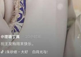 王友梅是谁是什么梗